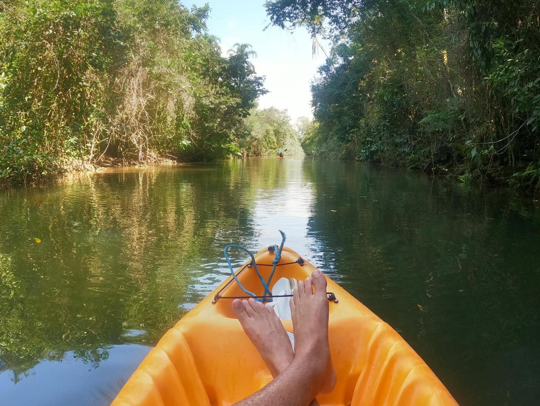 No trajeto, passamos por manguezal e conhecemos a biodiversidade deste berçário natural